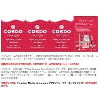 コエドビール祭り-eye