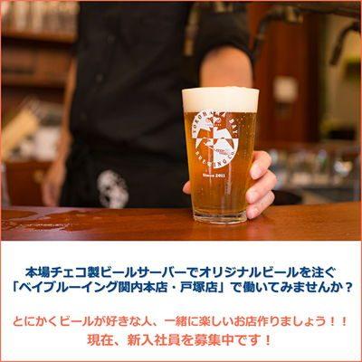 本場チェコ製ビールサーバーでオリジナルビールを注ぐ「ベイブルーイング関内本店・戸塚店」で働いてみませんか?